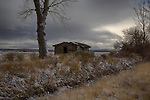 Idaho, South central, Twin Falls, Castleford, Roseworth. A recent snow squall adds charm to the lonely scene of a abaandoned log cabin in January.