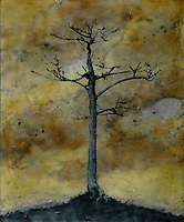 Mixed media photography art - bare tree silhouette photo transfer over encaustic painting.