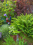 Vashon-Maury Island, WA: Colorful glass flowers in a tableau of ferns, grasses, persacaria, ninebark, and rhododendrons