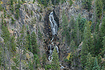 USA, CO, Steamboat Springs, Fish Creek Falls