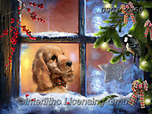 GIORDANO, CHRISTMAS ANIMALS, WEIHNACHTEN TIERE, NAVIDAD ANIMALES, paintings+++++,USGI2950,#xa# ,dog,dogs