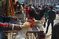 Selling chicken before they been offered at Dakshinkall Bungamati, Khokana Animal sacrifice Temple, Kathmandu, Nepal