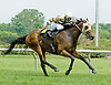 Lady Raven winning at Delaware Park on 5/30/12