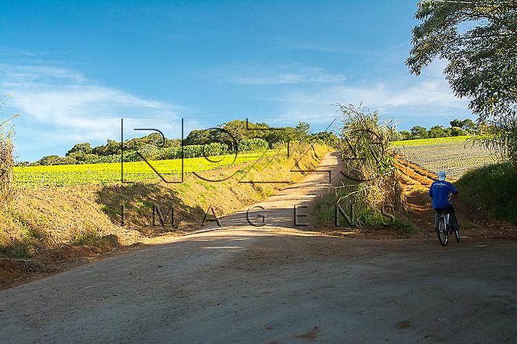 Estrada de terra ao da plantação de alface, Cotia - SP, 06/2015.