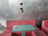 France. Department Ile-de-France. Paris. Centre national d'art et de culture Georges-Pompidou. Interior design modern pink furniture. A red rose on a table in the restaurant of the Centre Georges Pompidou, also known as the Pompidou Centre, which is a complex in the Beaubourg area of the 4th arrondissement of Paris, near Les Halles, It was designed in the style of high-tech architecture and houses the Musée National d'Art Moderne which is the largest museum for modern art in Europe. Because of its location, the Centre is known locally as the Beaubourg. 09.07.2011 © 2011 Didier Ruef *** Local Caption *** .
