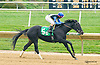 Halibut Cove winning at Delaware Park on 10/17/15