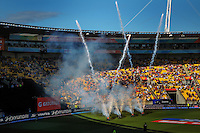 A fireworks display is put on during the lunch break in the ICC Cricket World Cup one day pool match between the New Zealand Black Caps and England at Wellington Regional Stadium, Wellington, New Zealand on Friday, 20 February 2015. Photo: Dave Lintott / lintottphoto.co.nz