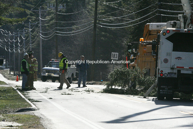 TORRINGTON, CT - 30 December, 2008 - 123008MO06 - Torringford Street was closed for several hours Tuesday at the intersection with Greenwoods Road in Torrington after a tree fell on power lines leaving about 300 people without power. High winds downed trees and limbs causing scattered outages across the region. More than 5,300 Connecticut Light and Power customers were without power at 4 p.m. Jim Moore Republican-American.