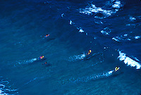 Makapuu beach with bodyboarding heading out in swell, Oahu