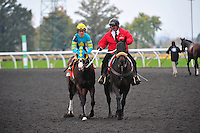 Next Question(7) with Jockey Ramon A. Dominguez aboard .celebrates their win of the Nearctic Stakes (Grade 1) at Pattison Canadian International  in Toronto, Canada on October 14, 2012.