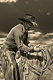 USA, Wyoming, Encampment, a cowboy at Big Creek Ranch takes a rest on his horse during a cattle branding (B&W)