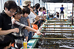 Volunteers participating in the Team Tyura  coral reef restoration project look around a coral aquaculture facility in Onna Village, Okinawa Prefecture, Japan, on June 23, 2012. Participants are given the chance to attach their names to pieces of coral that are placed into the tanks before being bolted to the sea bed in the nearby bay. Coral seedlings are put on small plates made of coral-like components, then fixed in place by wire and given a registration  number. They are raised at an aquafarm for several months before being bolted to the sea floor. Photographer: Robert Gilhooly...