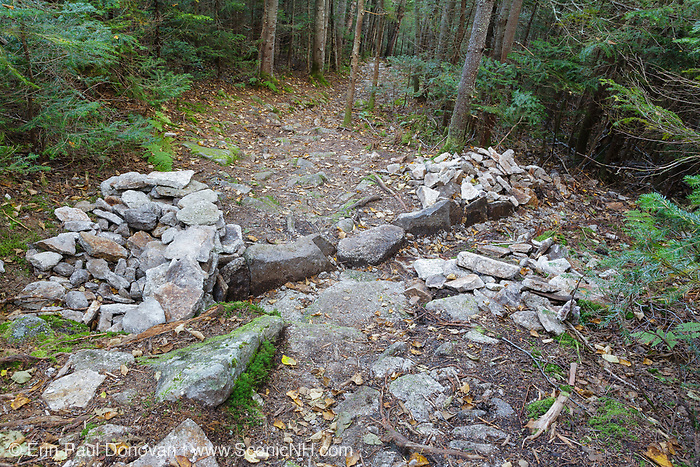Non-conforming stone structures (wall) along the Mt Tecumseh Trail in the New Hampshire White Mountains during the summer of 2011. Water bar across trail is per guidelines. Trail maintenance handbooks suggest the best trails show little evidence of trail work and that work should blend in with the surroundings.<br /> After a trail inspection by Forest Service in June 2012, the walls on each side of the drainage may be removed because they have no real use.