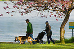 Seward Park, Seattle Parks and Recreation. Couple walking dog in park.