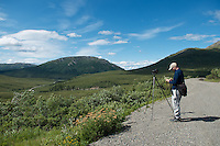July 5 2012, Ron Karpilo taking notes on the edge of the Denali Park Road leading to the Sanctuary River, Denali National Park and Preserve, Alaska. Photo by Lacy Karpilo.