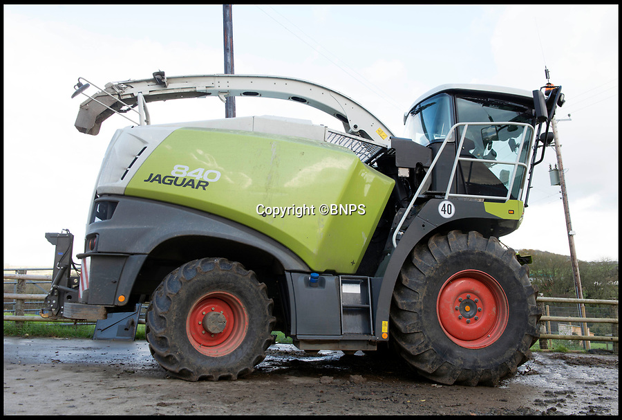 BNPS.co.uk (01202 558833)Pic: LeeMcLean/BNPS<br /> <br /> The 15 ton forager...<br /> <br /> Squashed Border collie Winnie has miracle escape from 15 ton tractor - Soggy ground saves  sheepish pooch.<br /> <br /> A pregnant sheepdog had a miracle escape after she was run over by a 15-tonne tractor - and survived because she was pushed into the soft mud.<br /> <br /> Shepherd Josh Sibley feared the worst when Winnie, a Border Collie, chased a rabbit under the 2ft wide tyre of a forage harvester.<br /> <br /> Luckily, because the ground was so soft Winnie was pinned down into the mud rather than being crushed to death.