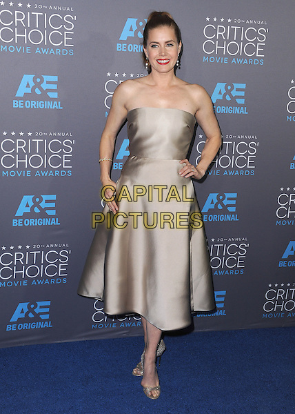 LOS ANGELES, CA - JANUARY 15:  Amy Adams at the 20th Annual Critics' Choice Movie Awards at the Hollywood Palladium on January 15, 2015 in Los Angeles, California.  <br /> CAP/MPI/PGSK<br /> &copy;PGSK/MediaPunch/Capital Pictures