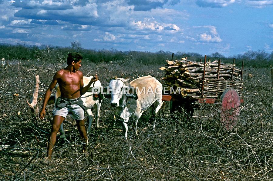 Transporte de lenha no sertão de Pernambuco. 1999. Foto de Ricardo Azoury.