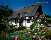 Tom Mackie, FLOWERS, photos, Thatched Cottage & Garden, Eastnor, Herefordshire, England, GBTM924021-1,#F# Garten, jardín