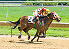 Abide By Me winning at Delaware Park on 6/21/17