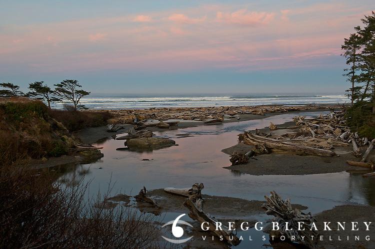 View of Kalaloch Beach - Olympic National Park - Washington State