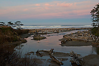View of Kalaloch Beach - Olympic National Park - Washington State