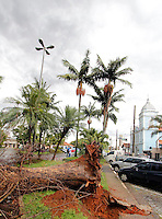 MOGI DAS CRUZES, SP, 06 JANEIRO 2012 - CHUVA DERRUBA ARVORE EM MOGI DAS CRUZES - Uma arvore caiu devido a for chuva na Praca Bom Jesus, no centro da cidade de Mogi das Cruzes na grande Sao Paulo. (FOTO: WARLEY LEITE - NEWS FREE).