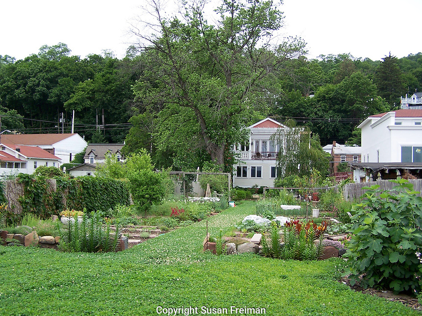 Photos in Joan Gussow's garden, Piermont, NY