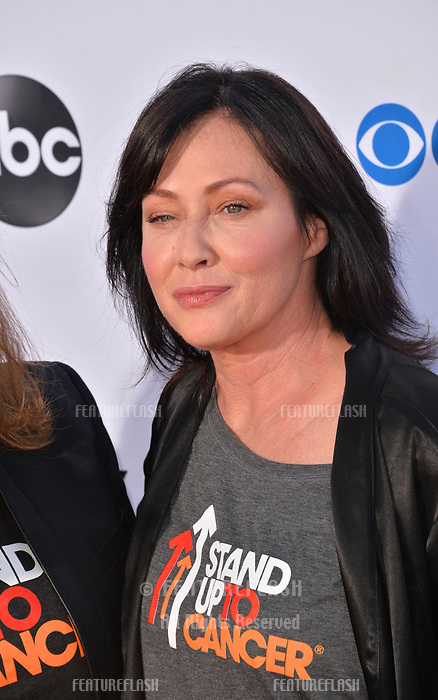 SANTA MONICA, CA. September 07, 2018: Shannen Doherty at the 2018 Stand Up To Cancer fundraiser at Barker Hangar, Santa Monica Airport.