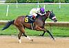 Beautiful Maiden winning at Delaware Park on 6/21/17