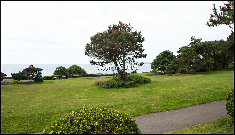 BNPS.co.uk (01202 558833)<br /> Pic: PhilYeomans/BNPS<br /> <br /> The view out to sea with the damaged tree's in the centre.<br /> <br /> Police have launched an investigation after two mature trees were drilled into and poisoned by an unscrupulous homeowner in order to improve their sea view. <br /> <br /> Residents in the picturesque West Cliff area of Bournemouth, Dorset, were furious after they discovered the sophisticated attempt to kill off the pair of 30ft Scots pines.<br /> <br /> They believe the trees have been deliberately poisoned so they will have to be felled, giving a better view of Poole Bay from luxury flats overlooking the cliff and leading to an increase in the value of the property.<br /> <br /> Police and council officials are now investigating the criminal damage which has involved someone making numerous drill holes deep into the trunks of the two trees to pour in poisonous chemicals.
