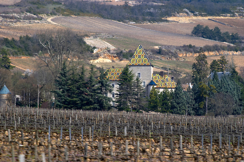 Le Chateau de Santenay vineyard santenay cote de beaune burgundy france