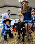 Cason Loew dress as a cowboy grooms his calf during the Bucket Calf event during the Warren County Fair.