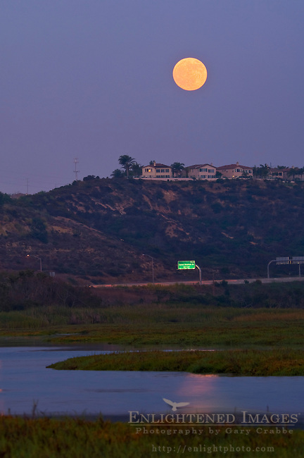 Full moon rising in evening light over houses and estuary, Los Penasquitos Marsh Natural Preserve, San Diego, California