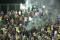 PALMIRA - COLOMBIA, 04-04-2019: Hinchas del Cali animan a su equipo durante partido por la primera ronda de la Copa CONMEBOL Sudamericana 2019 entre Deportivo Cali de Colombia y Club Guaraní de Paraguay jugado en el estadio Deportivo Cali de la ciudad de Palmira. / Fans of Cali cheer for their team during match for the first round as part Copa CONMEBOL Sudamericana 2019 between Deportivo Cali of Colombia and Club Guarani of Paraguay at Deportivo Cali stadium in Palmira city.  Photo: VizzorImage / Gabriel Aponte / Staff