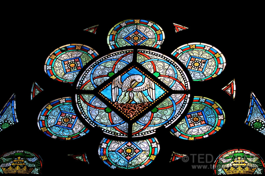 Stain glass window detail in Notre Dame Church, Paris