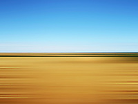 Wheat field with flat horizon in blurred motion