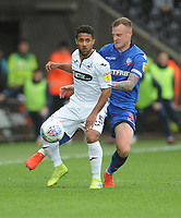Swansea City's Wayne Routledge under pressure from Bolton Wanderers' David Wheater<br /> <br /> Photographer Kevin Barnes/CameraSport<br /> <br /> The EFL Sky Bet Championship - Swansea City v Bolton Wanderers - Saturday 2nd March 2019 - Liberty Stadium - Swansea<br /> <br /> World Copyright © 2019 CameraSport. All rights reserved. 43 Linden Ave. Countesthorpe. Leicester. England. LE8 5PG - Tel: +44 (0) 116 277 4147 - admin@camerasport.com - www.camerasport.com