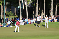 Alexander Levy (FRA) putts on the 16th green during Sunday's Final Round of the 2018 Turkish Airlines Open hosted by Regnum Carya Golf &amp; Spa Resort, Antalya, Turkey. 4th November 2018.<br /> Picture: Eoin Clarke | Golffile<br /> <br /> <br /> All photos usage must carry mandatory copyright credit (&copy; Golffile | Eoin Clarke)