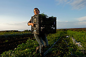 Santa Cruz, California<br />