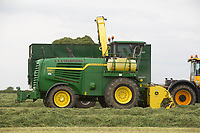 Contractors chopping silage <br /> &copy;Tim Scrivener Photographer 07850 303986<br /> ....Covering Agriculture In The UK....