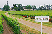 A view of Chateau Cheval Blanc, a white sign, its vineyard and a road leading to the chateau Bordeaux Gironde Aquitaine France
