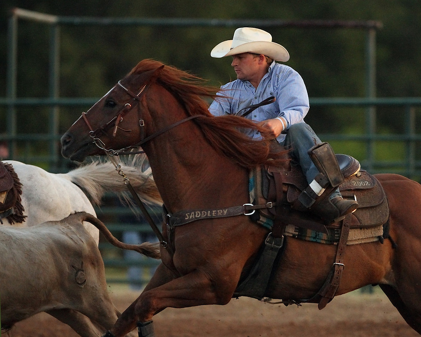 Steer roping action at the Riata Roundup in Lometa Texas, June 8th 2013.