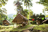 PHILIPPINES, Palawan, Barangay region, cow stands in front of a Batak home in Kalakwasan Village