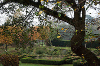 The structure of a formal garden is just visible amidst the overgrown plants and weeds