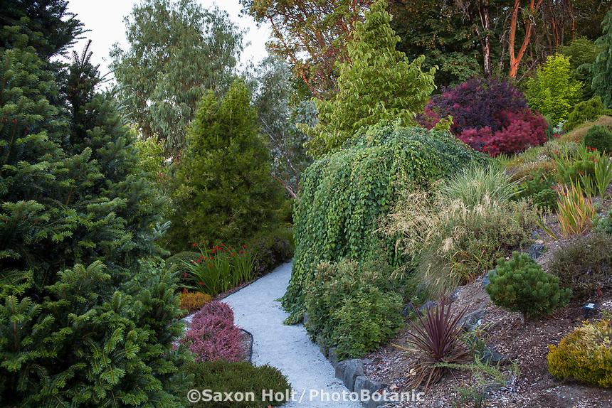 Gravel path through Northwest garden, Albers Vista Gardens