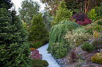 Gravel path through Northwest garden, Albers Vista Gardens