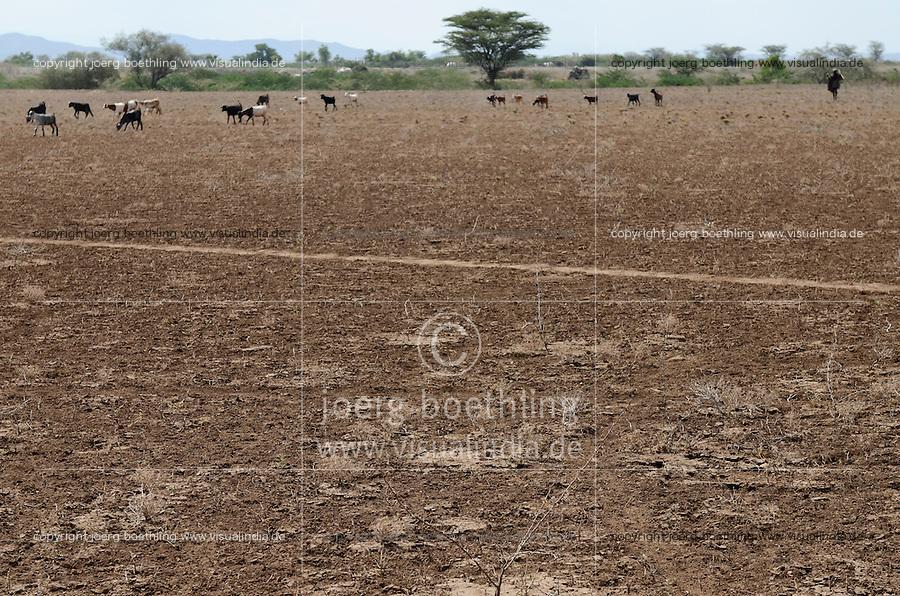 KENYA Turkana Region, Kakuma , Turkana a nilotic tribe, the region suffers from permanent drought problems  / KENIA Turkana Region , Kakuma, hier leben die Turkana ein nilotisches Volk, die Region leidet unter staendiger Duerre