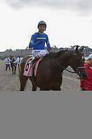 JUL 19,2014:Istanford,ridden by Rafael Bejarano,wins the San Clemente Handicap at Del Mar in Del Mar,CA. Kazushi Ishida/ESW/CSM
