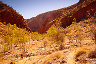 Image Ref: CA543<br />